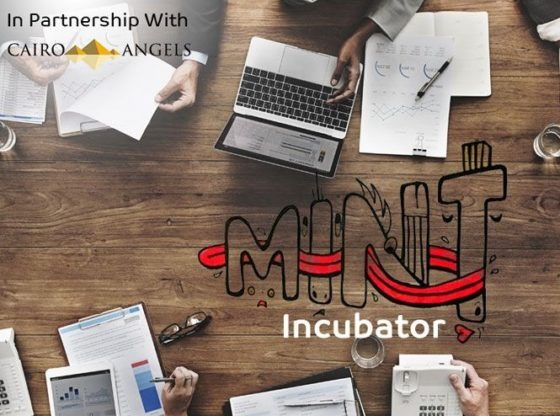 Egypt's Mint Incubator -2020 edition calls for Applications