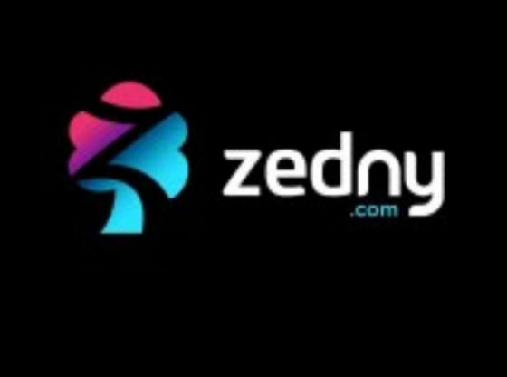 Edtech startup Zedny receives US$1.2Million from Angel Investors