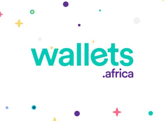 Nigerian fintech- Wallets Africa raises undisclosed amount