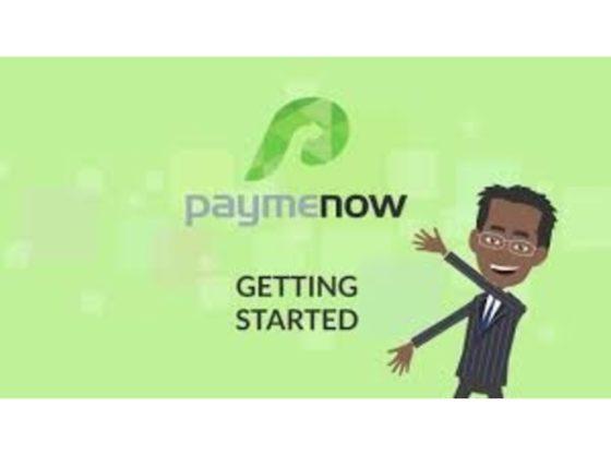 PAYMENOW logo