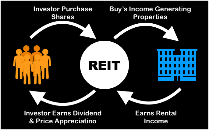 REIT Process